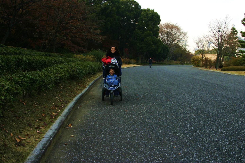 cat_strolling_ld_in_imperial_park_tokyo_japan_dec_2007