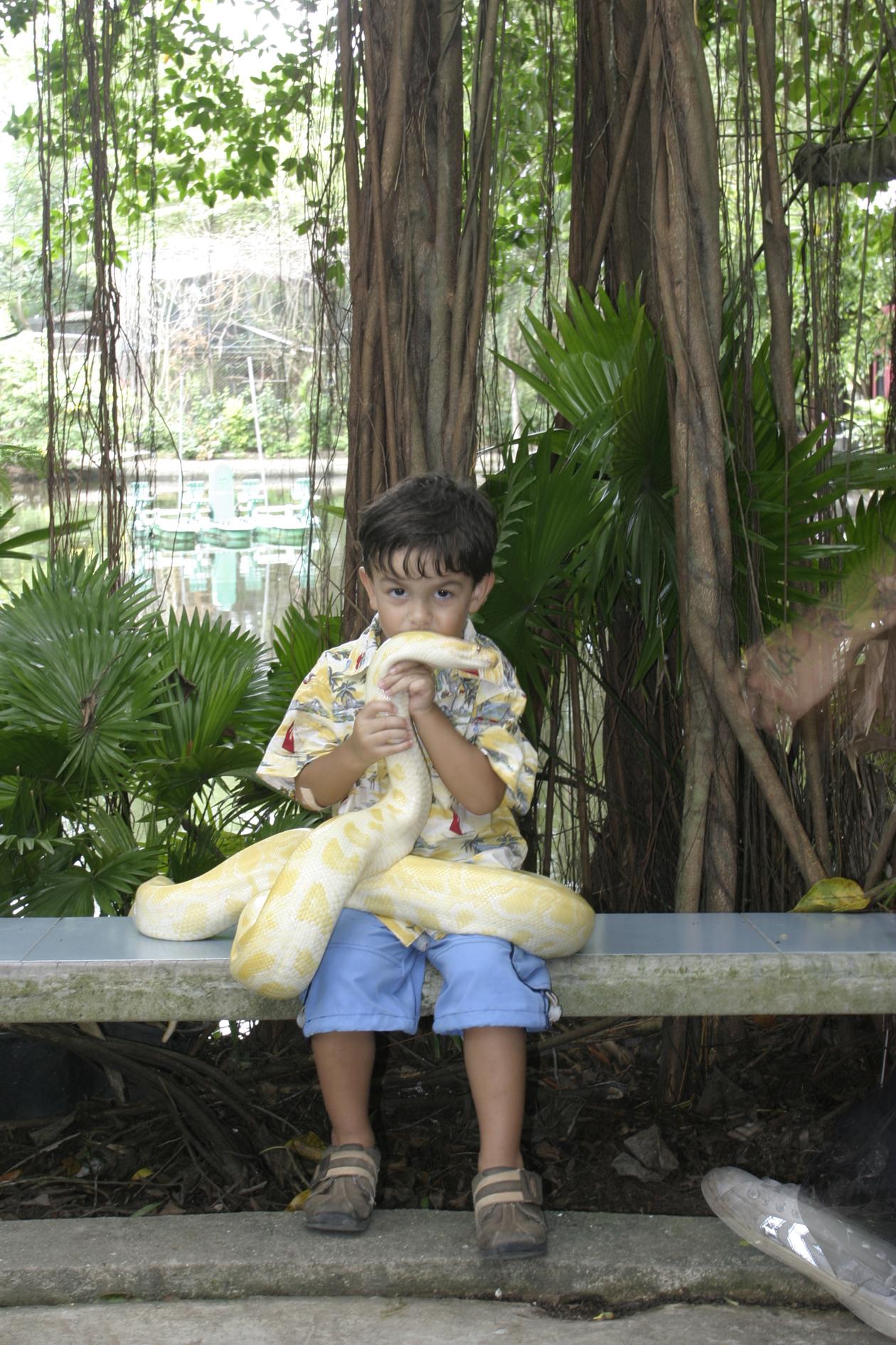 kissing_snake_phuket_thailand_zoo_2007