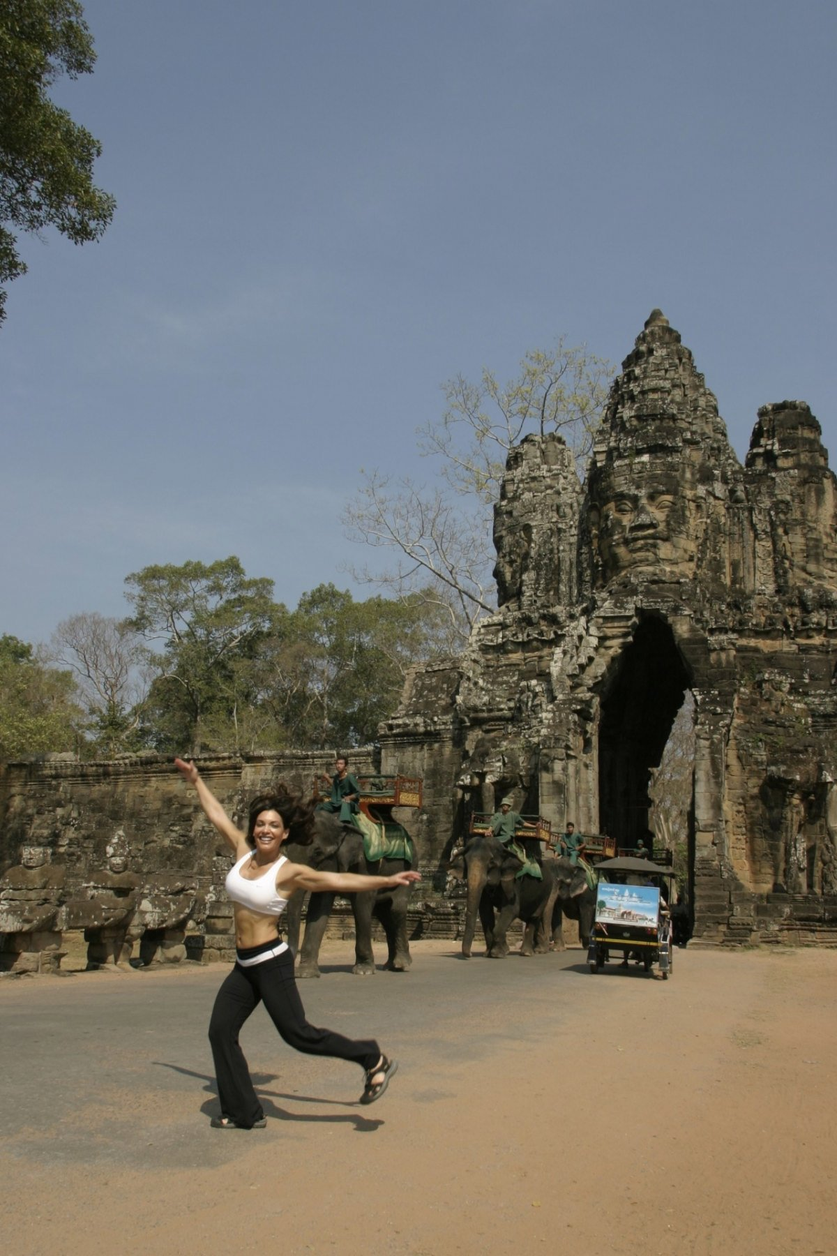 cat-jumping-i-f-o-gate-cambodia10-23-2011