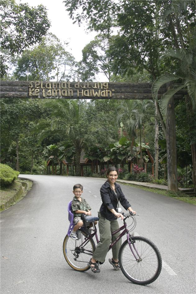 cat_and_ld_biking__in_park_kuala_lumpur_malaysia_january_2008