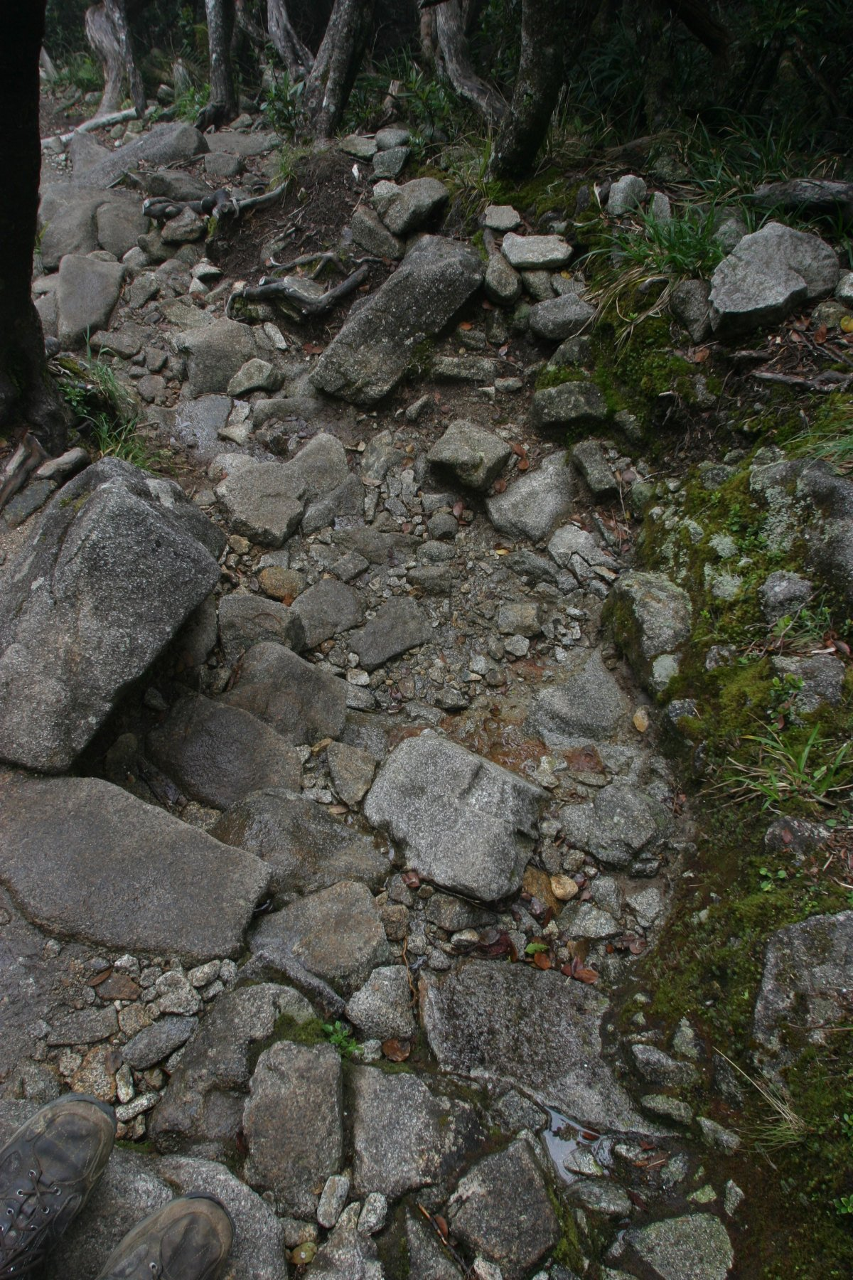 img_873810-23-2011