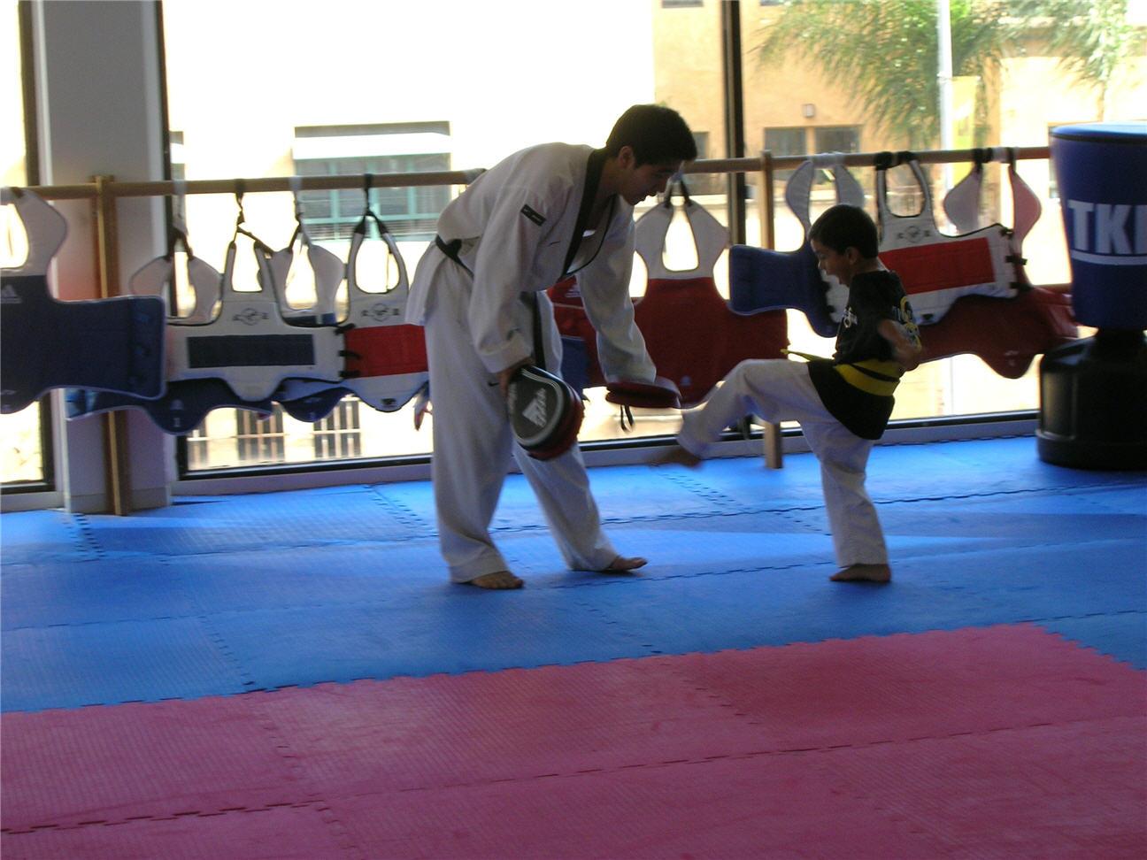 taekwondo-training-with-master-matt